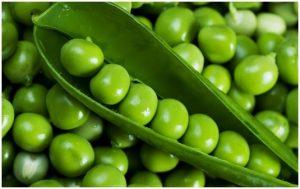 Beneficios de las legumbres en las dietas